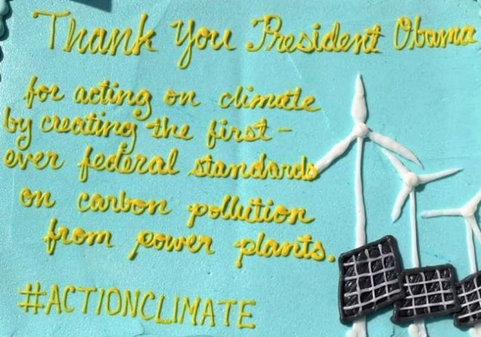 Clean Power Lake County's celebratory cake in Waukegan on August 10, 2015.